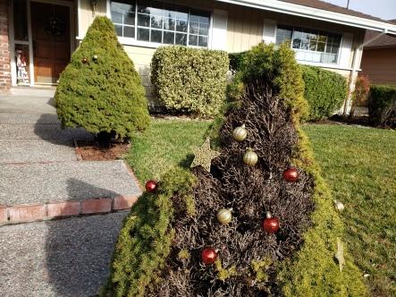 Ornaments & A Snowman