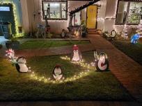 Penguins & Deer