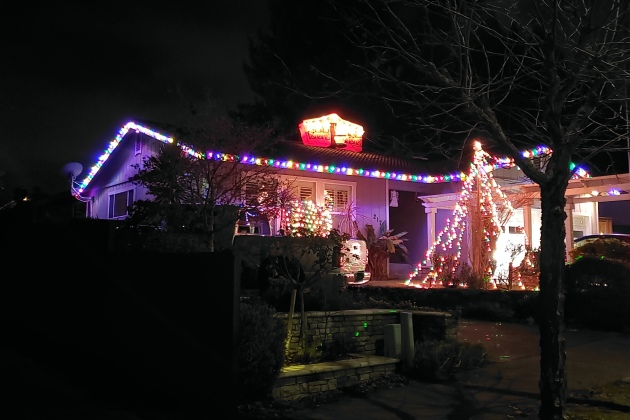 Rooftop Ornament & Lit Tree