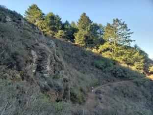 Sedimentary Stack on Wolf Ridge