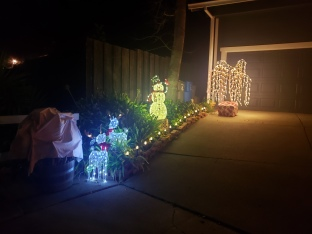 Snowman & Reindeer in Lights