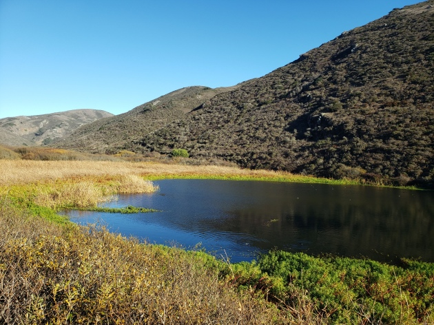 Tennessee Valley South Hills & Tidal Pool