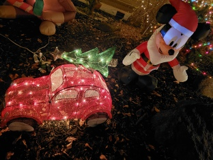 Tree-Car Closeup
