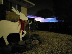 Unlit Deer w Background Lights