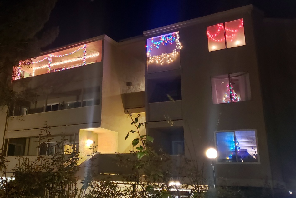 Window Lights & Trees