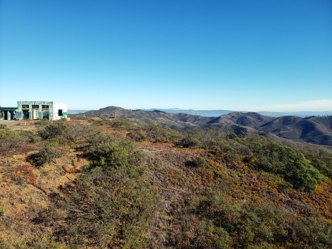 Building Graffiti Mt Diablo & SF FiDi Behind Hills