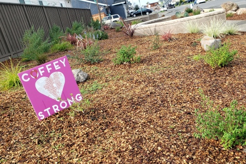 Coffey Park Rebuilt