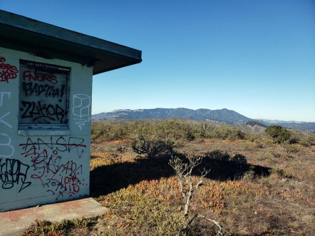 Mt Tam & Graffiti Bldg 2