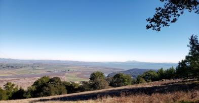 Petaluma Creek & Diablo From Olompali
