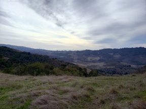 Bennet Valley & Taylor Mtn from Annadel