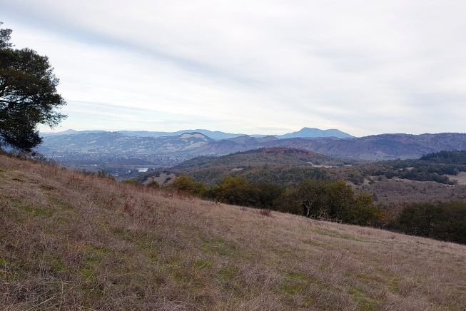 Mt St Helena from Annadel Slopes 2
