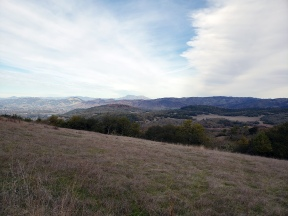 Mt St Helena from Annadel Slopes 3